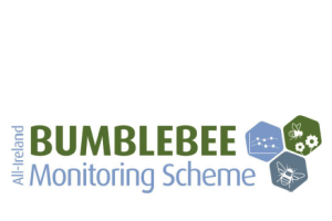 All-Ireland Bumblebee Monitoring Scheme