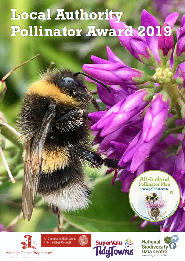 Click to view or download the 2019 Local Authority Pollinator Award newsletter.