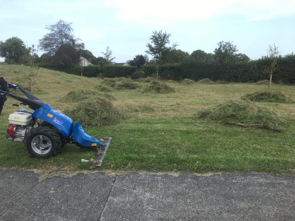 The power scythe we purchased in 2018, used to help the local Tidy Towns group manage an area of meadow in Portlaoise