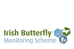 Irish Butterfly Monitoring Scheme