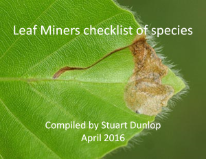 Leaf Miners Checklist cover