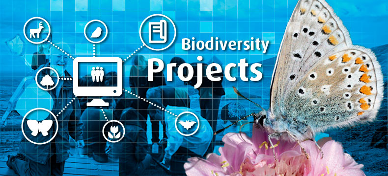 Biodiversity Projects