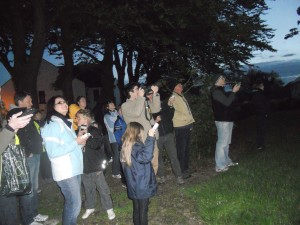Watching the bats