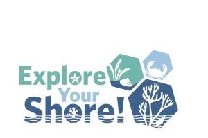 Explore Your Shore!