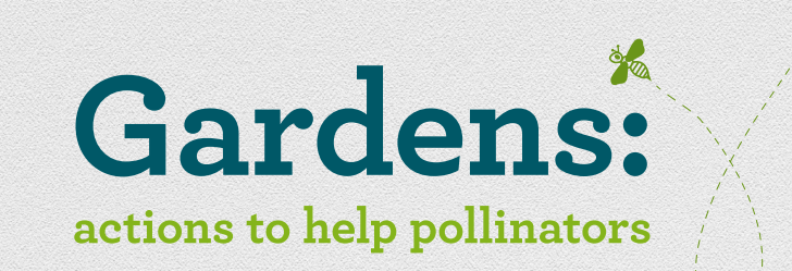 gardens-actions-to-help-pollinators