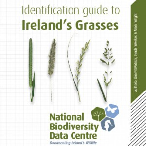 Grass Identification Guide