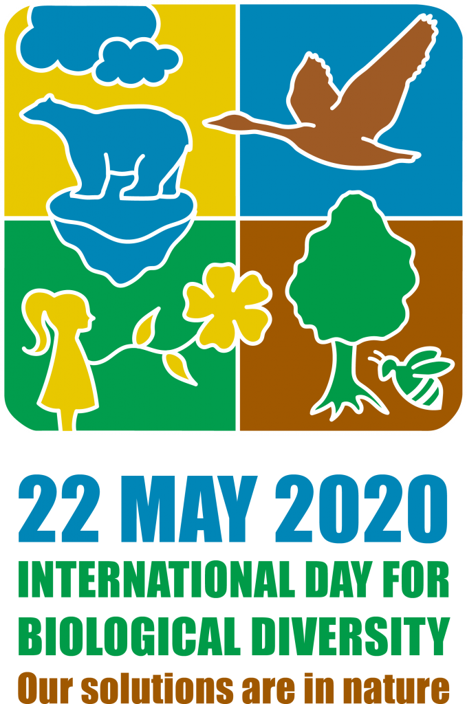 International Day of Biological Diversity, May 22nd 2020. LOGO